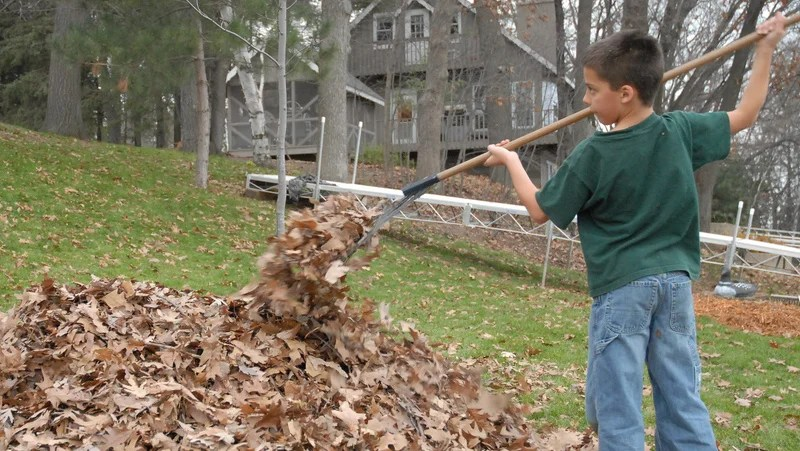 Leaf Shredder Attachment Lawn Mower