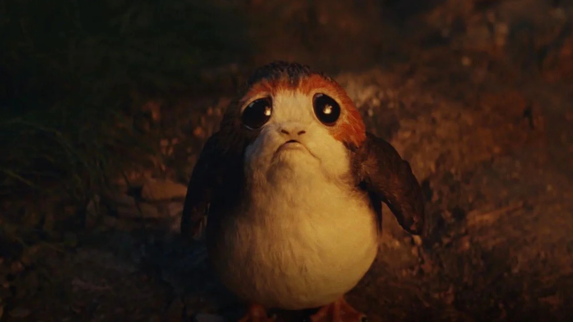 Watching Rian Johnson Slice Up A Porg Is Satisfying No