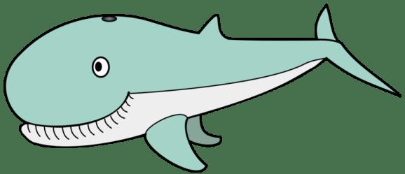 whale killer transparent sperm similars humpback clipart kisscc0