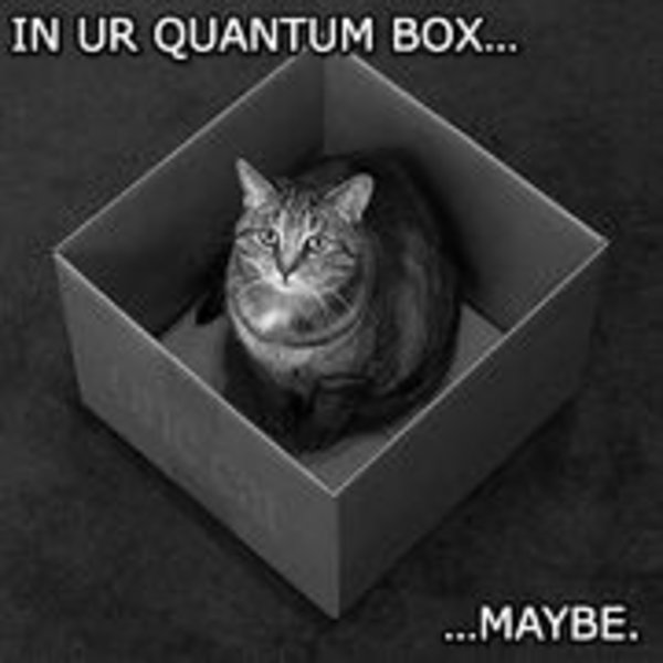 schrodinger s cat know