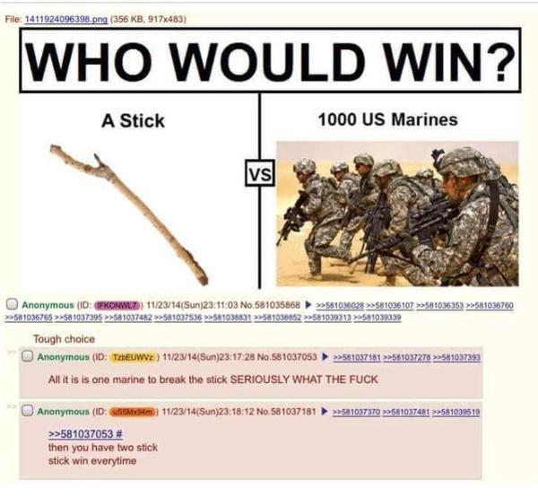 a stick vs 1000