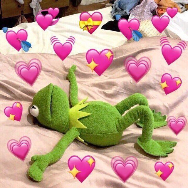 kermit s in love