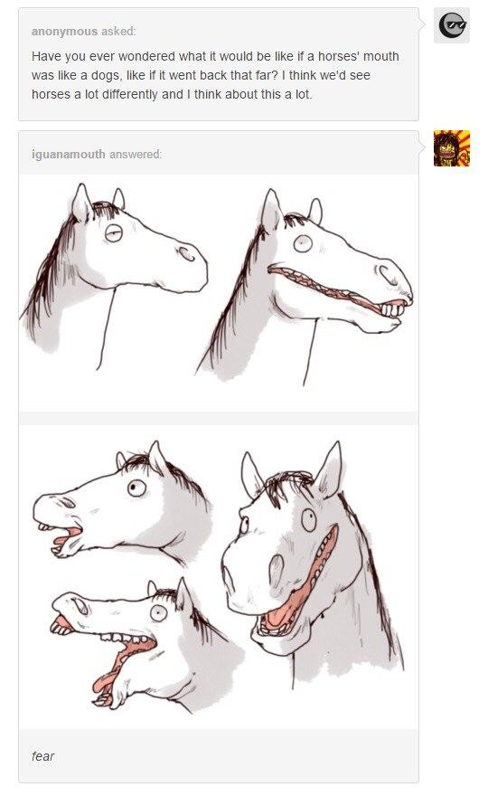Horse With A Dog Mouth : horse, mouth, Horses, Animals
