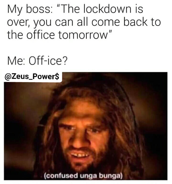 My boss:
