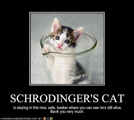 image 344690 schrodinger s