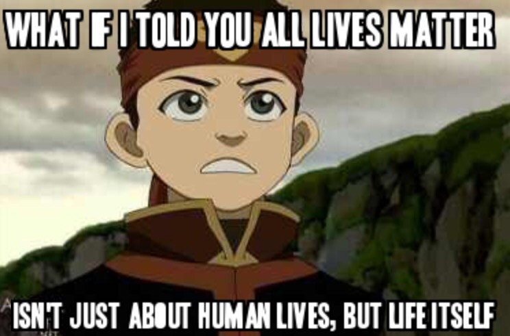 aang s advice to