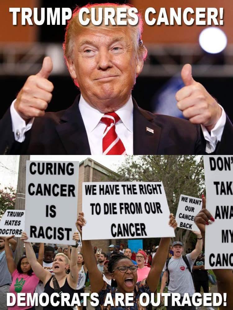 trump cures cancer trump