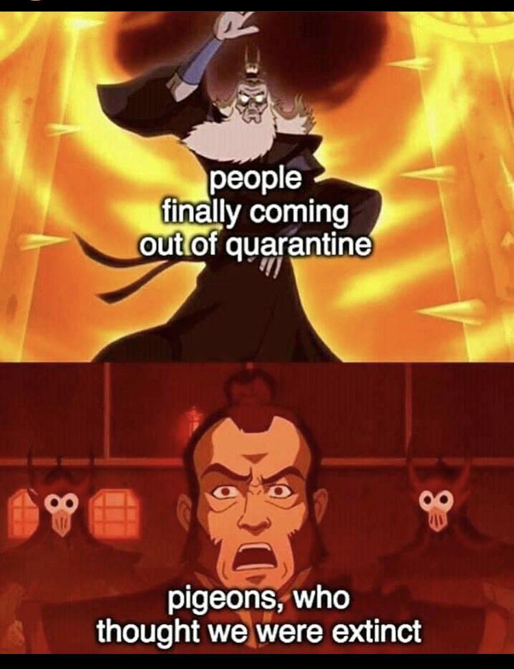 Avatar Memes : avatar, memes, Avatar, Memes, /r/dankmemes