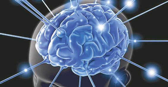 Beynin solu liberal sağı muhafazakâr