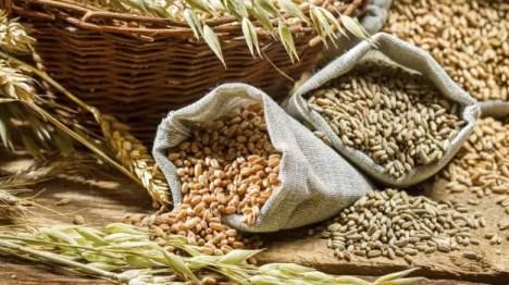 Image result for FIBER RICH FOODS