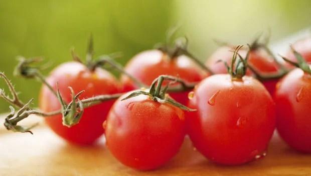 tomatoes 620