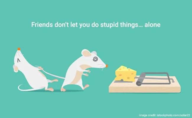 Old Sayings Stupid People
