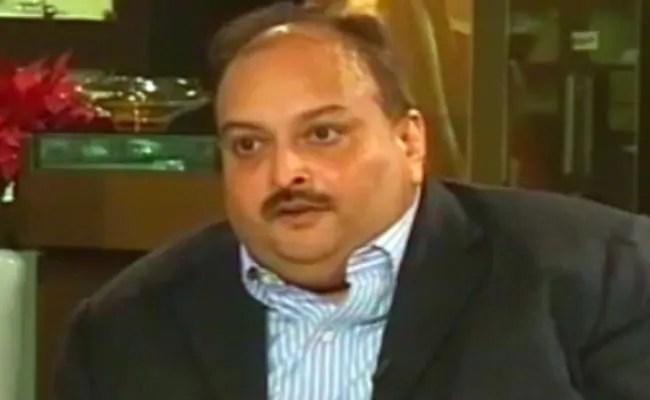 मेहुल चोकसी को भारत को सौंपे, एंटीगुआ के पीएम ने पड़ोसी डोमिनिका से पूछा