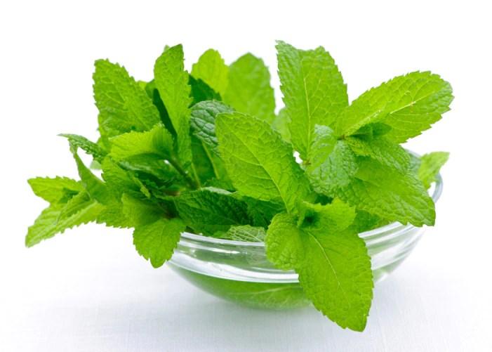 Image result for mint leaves Preparation