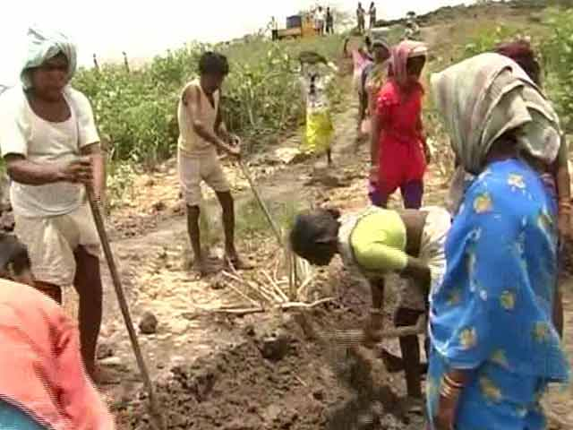 Telangana struck with severe drought across major districts