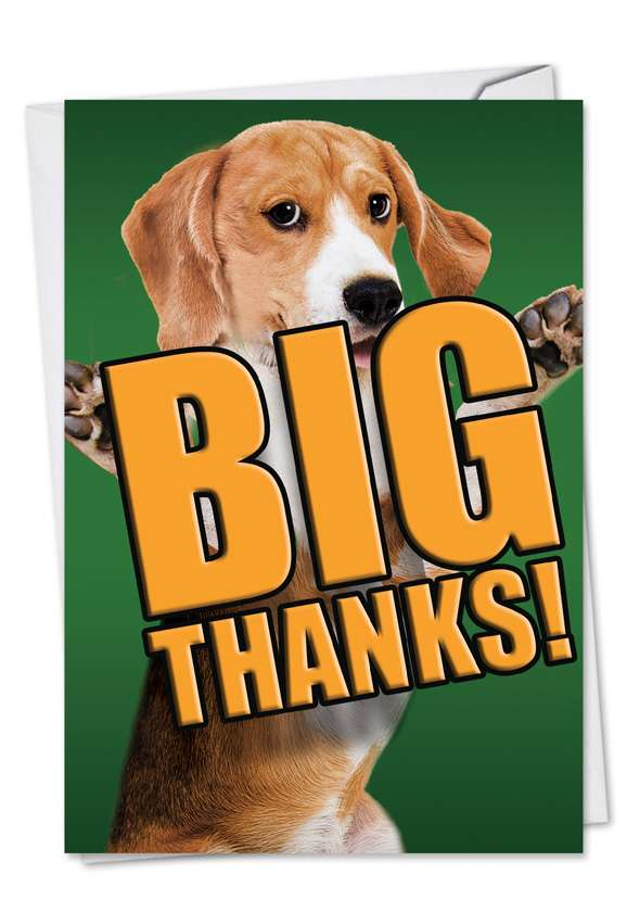 Thank You Dog Funny : thank, funny, Thanks, Nobleworks, Design, Thank