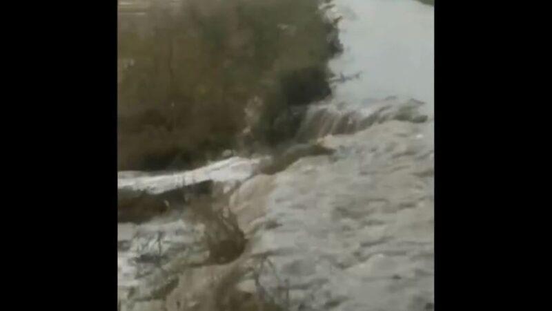 松花江2號洪水形成 黑龍江大壩決口淹7萬畝水稻   決堤   大慶   新唐人中文電視臺在線