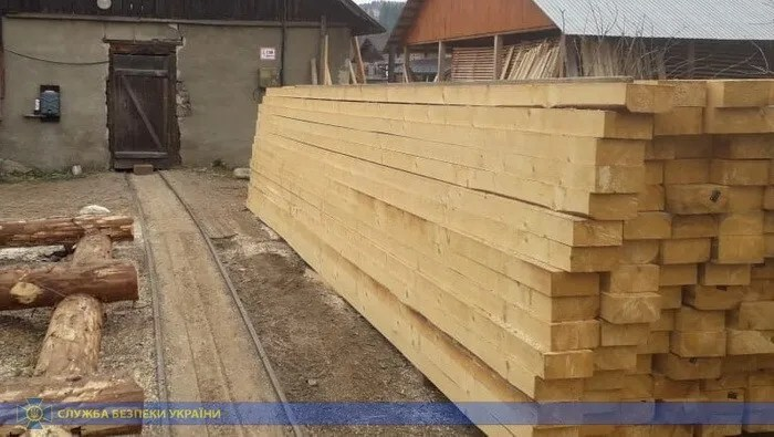 СБУ викрила масштабну схему незаконного експорту  лісу