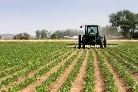 Agricultural Practice In Tanke, Ilorin Kwara State And How to Improve It