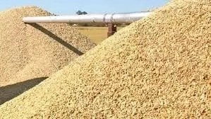 10 Challenges of Rice Production in Nigeria