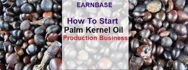 How To Start Palm Kernel Oil Business In Nigeria