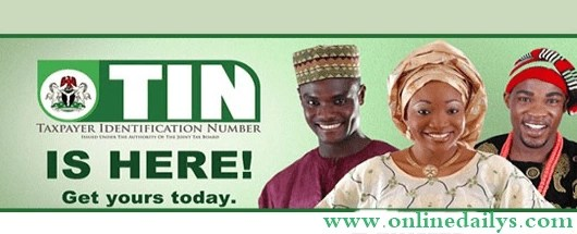 How To Get Tax Identification Number In Nigeria
