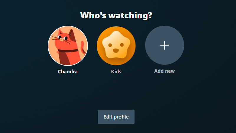 Who's Watching profile page with account holder avatar, kids avatar, and button to add another