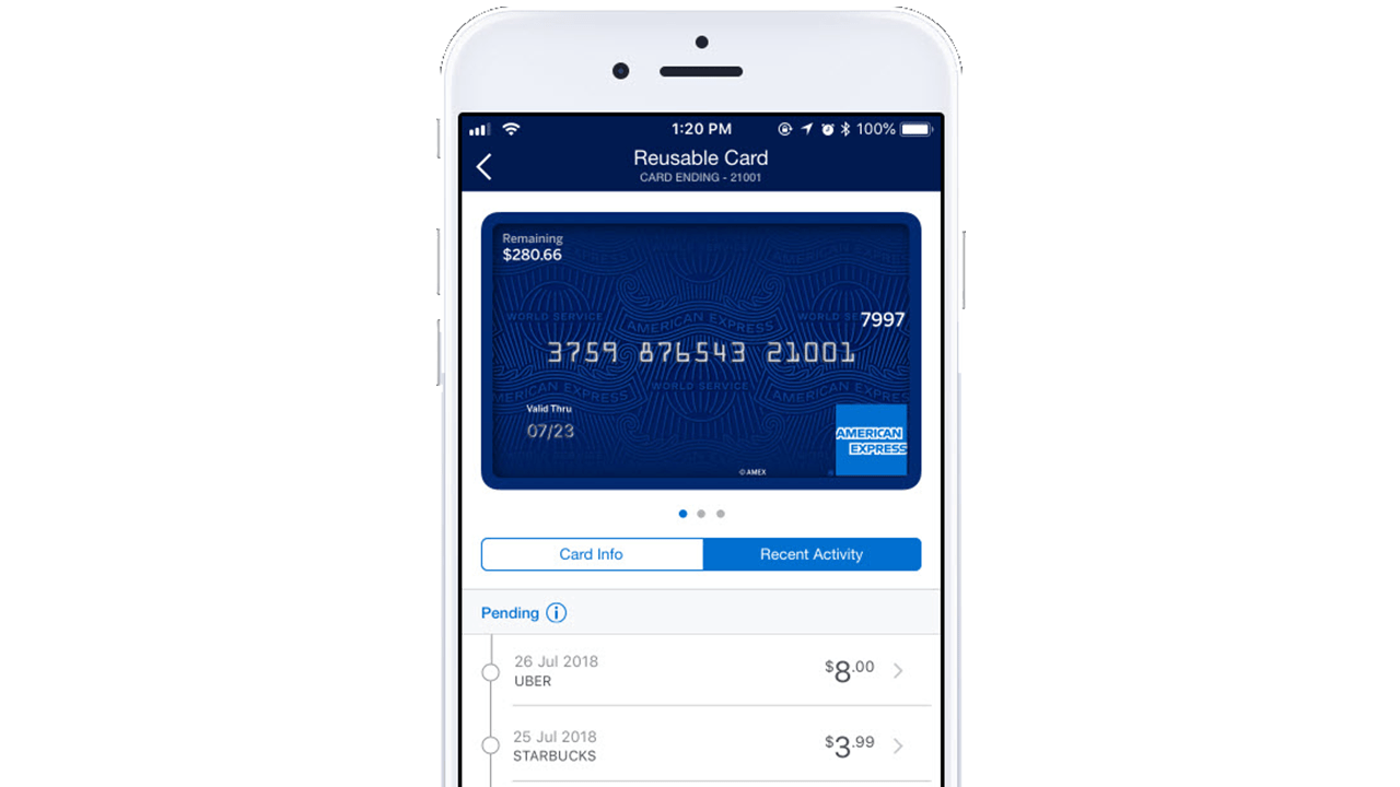 This prepaid credit card is free from paye, usc & How To Protect Yourself Online With Disposable Credit Card Numbers Pcmag