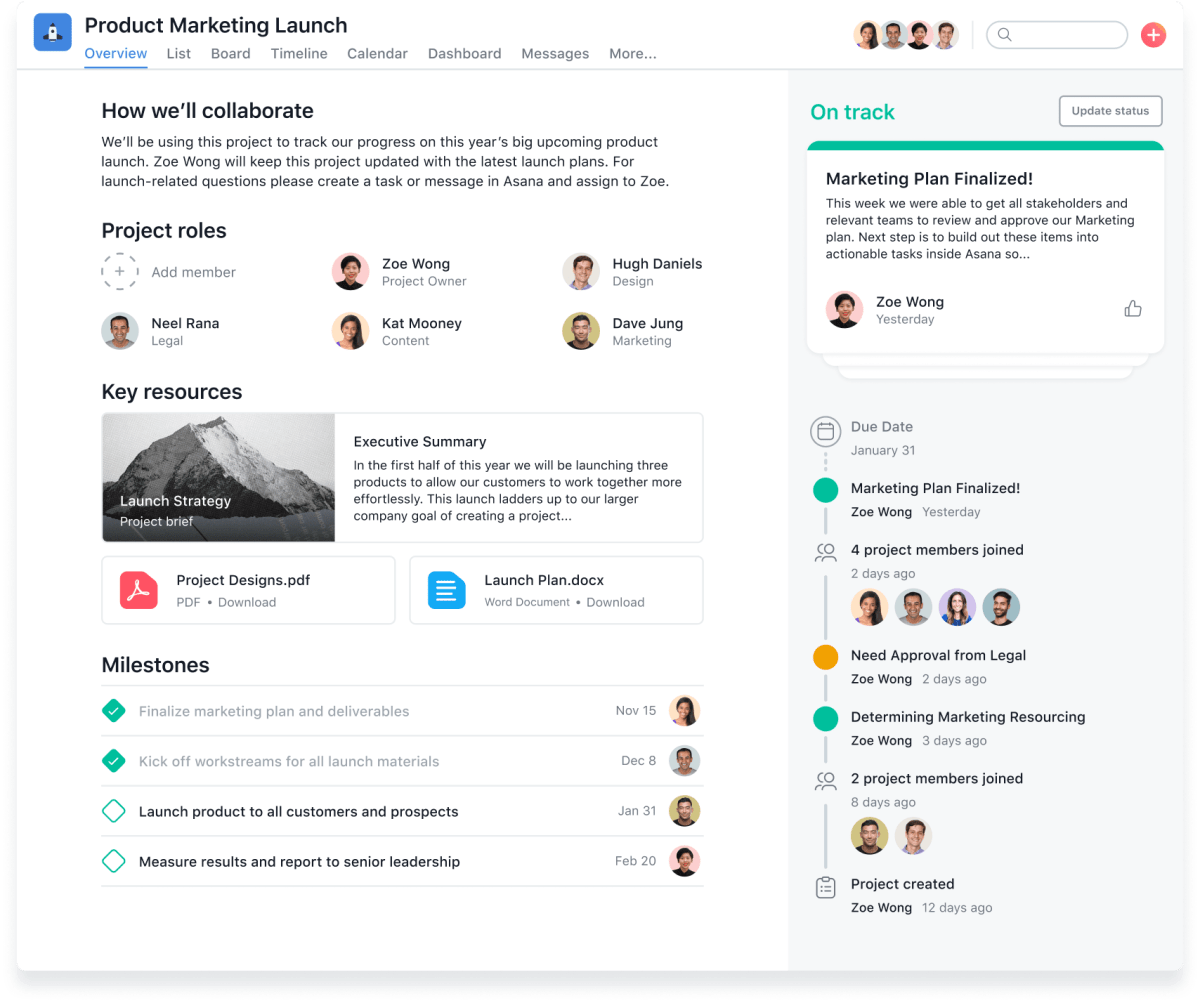 Asana project overview