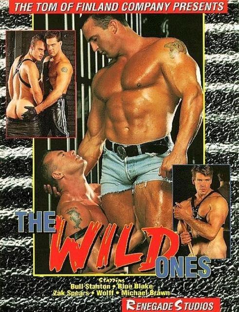 The Wild Ones (Renegade)