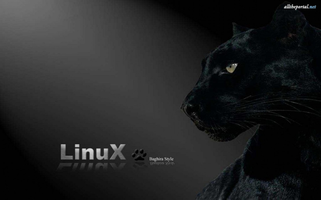 ALLTHEPORTAL-NET-Wallpapers-various-pack-computers-and-informatique-linux-windows-mac-hack-01