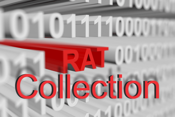 Rat Collections