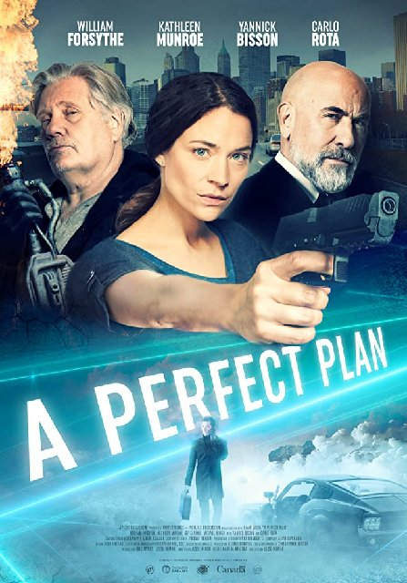 A Perfect Plan 2020 Movie Poster