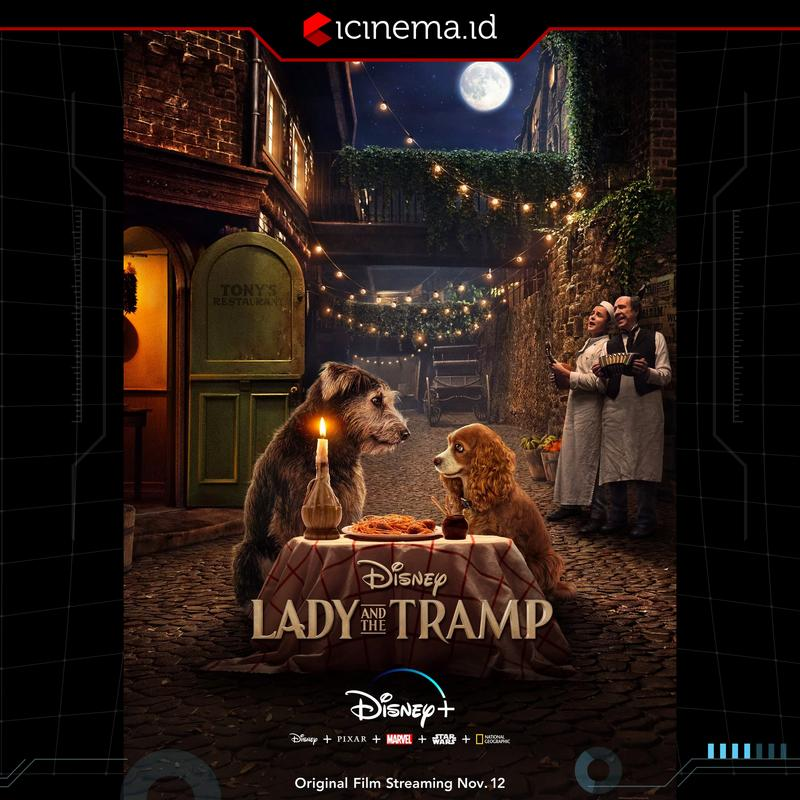 Trailer Lady and The Tramp