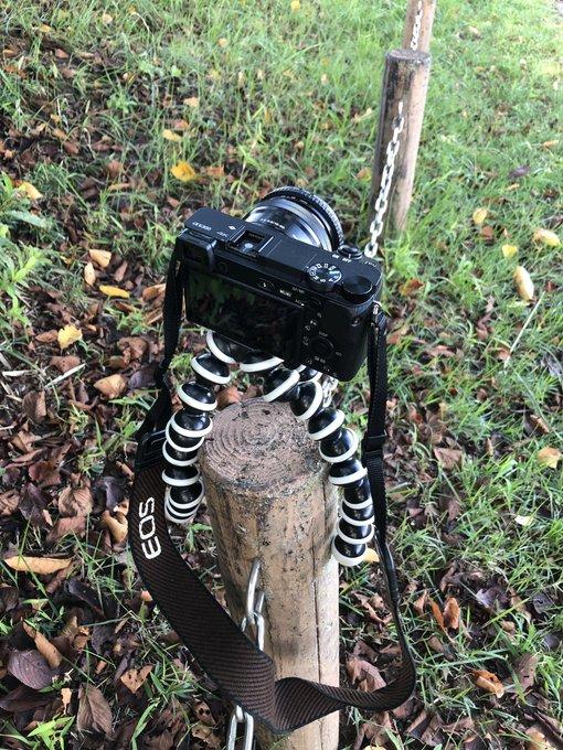 kamera dengan tripod