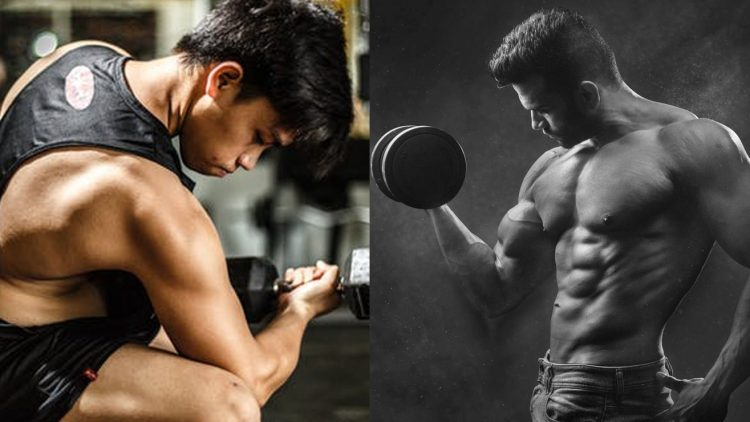 The Greatest Exercise Program For Pure Bodybuilders