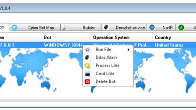 Cyber Bot-Worm  V1.0.4