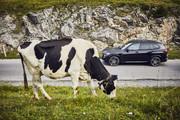 2020-BMW-X5-x-Drive45e-8