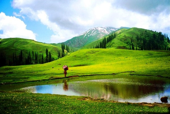 Are you planning tour to Naran Kaghan? Wants some guide?