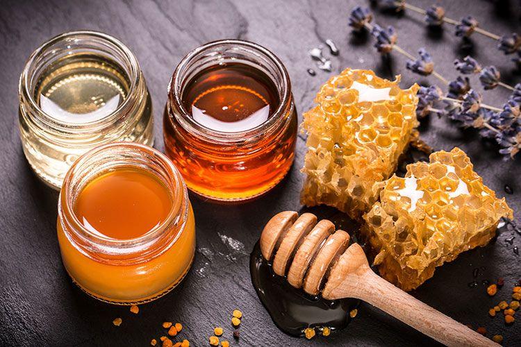 milyen méz javítja a látást ingyenes letöltés a szemészeti könyvekről