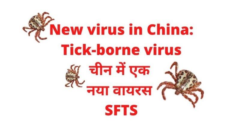 tick borne virus