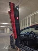 Lamborghini-Aventador-Spiderghini-wrap-18
