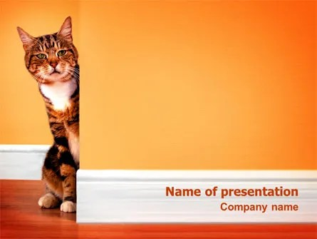 curious cat powerpoint template
