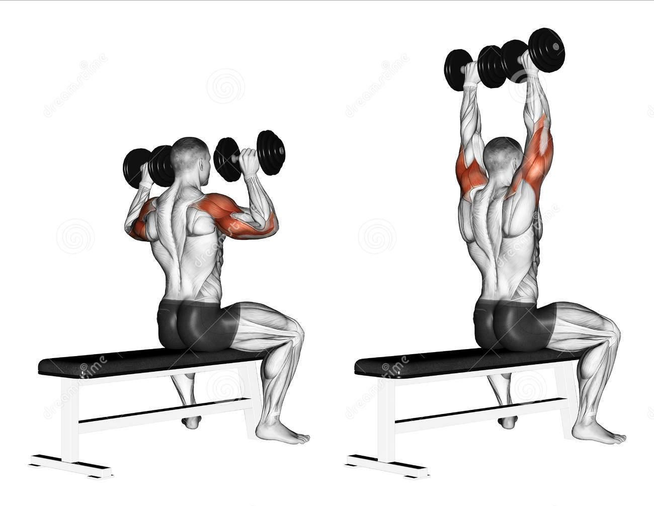 Could I have fucked up my lower back with this exercise