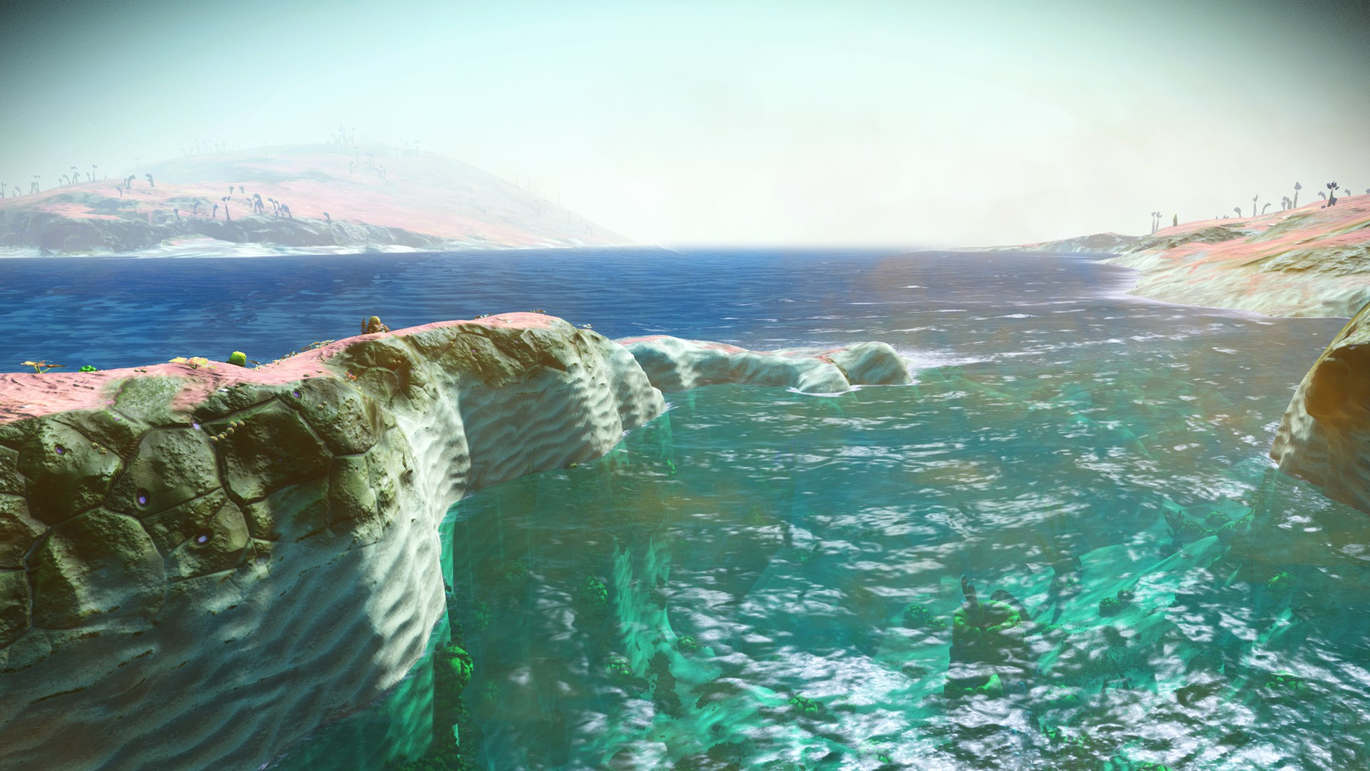 Two shades of water is this new in 1.38? : NoMansSkyTheGame