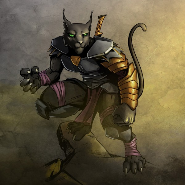 Tabaxi Rogue Dnd - Year of Clean Water