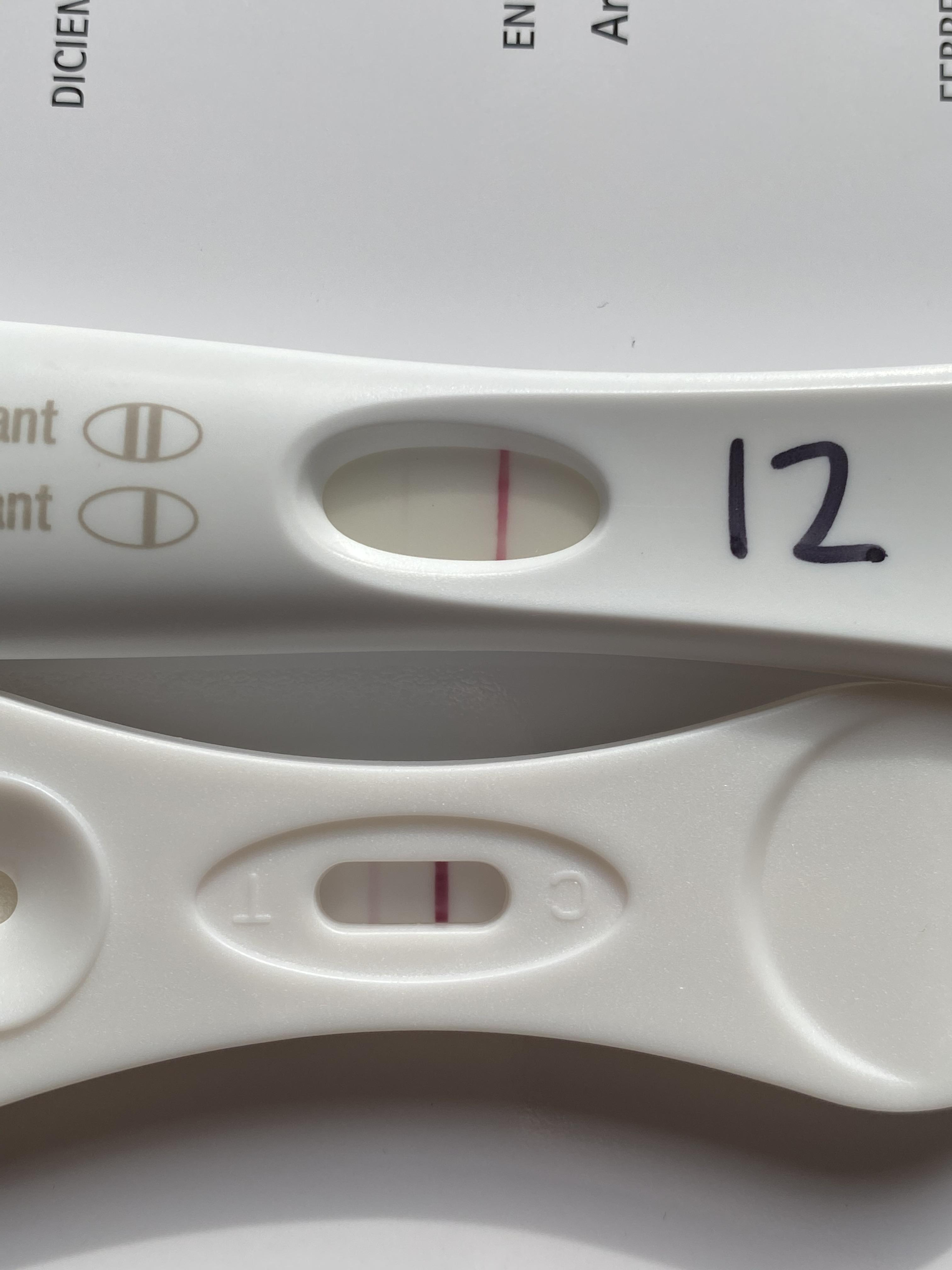 Veriquick Pregnancy Test Positive : veriquick, pregnancy, positive, 12DPO, Faint, Obvious, Dollar, Veriquick, Progression., TFABLinePorn