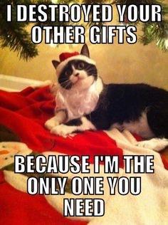 Friday Before Christmas Meme : friday, before, christmas, Happy, Friday, Everyone,, Here's, Christmas, Meme!!, SantasLittleHelpers