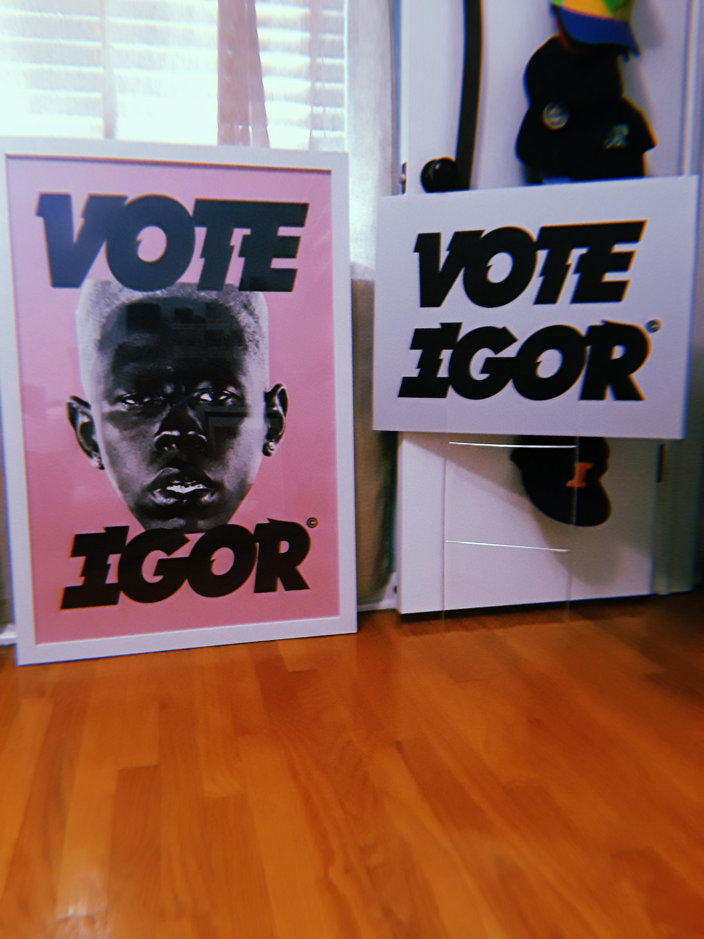 finally framed my vote igor poster