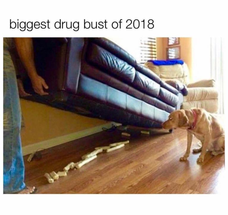 La mayor incautación de droga de 2018